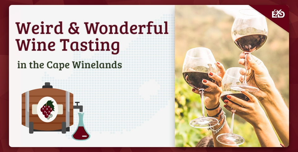 Weird and Wonderful Wine Tasting in the Cape Winelands