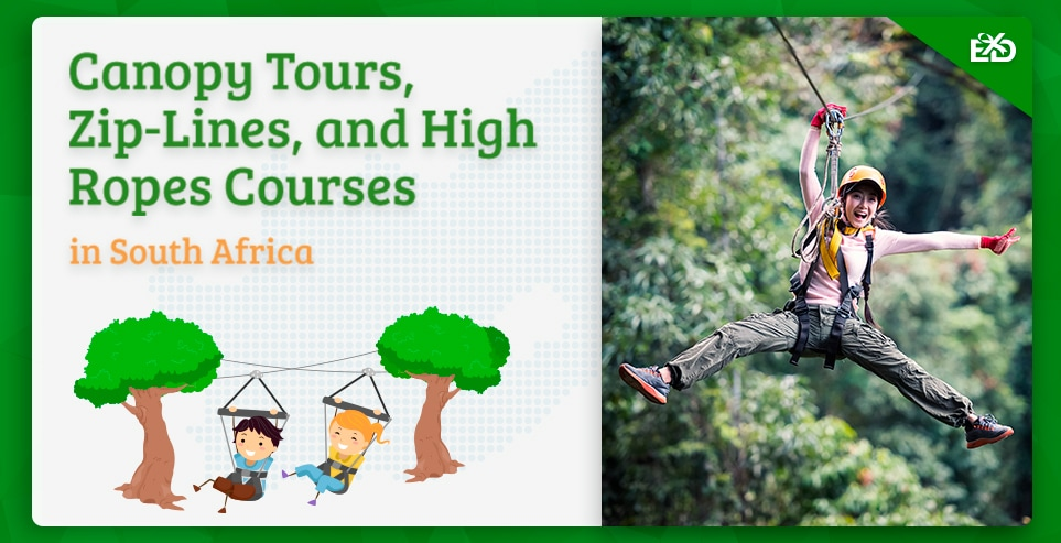 Canopy Tours, Zip-Lines, and High Ropes Courses in South Africa