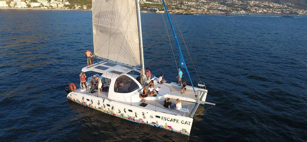 Catamaran Cruise and 3 Course Lunch in Cape Town-3