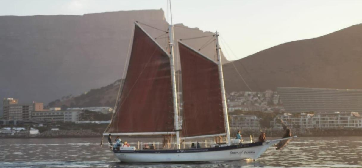 One Hour Schooner Cruise in Cape Town-4