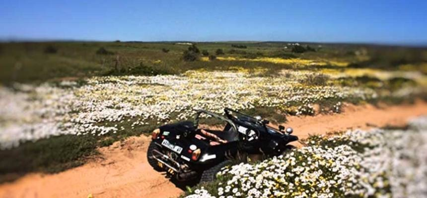 Two-Hour Beach Buggy Tour of Paternoster-2