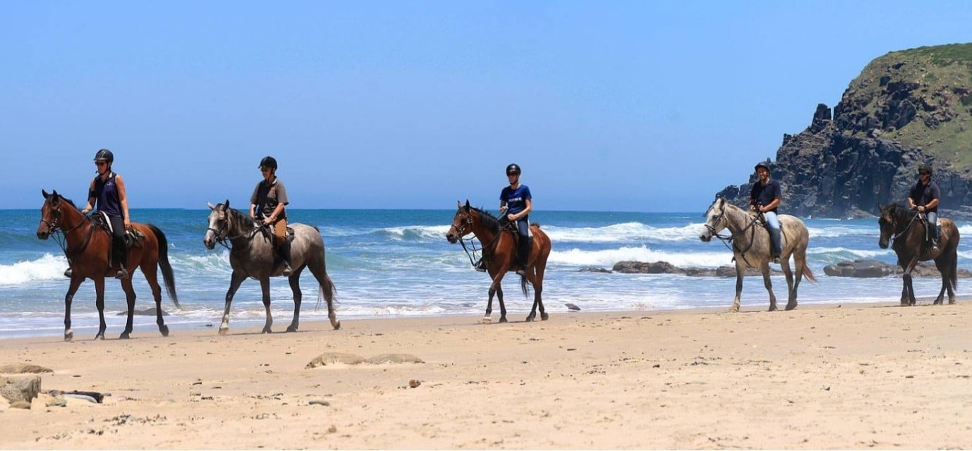 Beginners Beach Horse Riding in East London-1