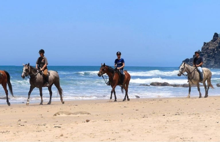 Beginners-Beach-Horse-Ride-Kei-Mouth-big.jpg