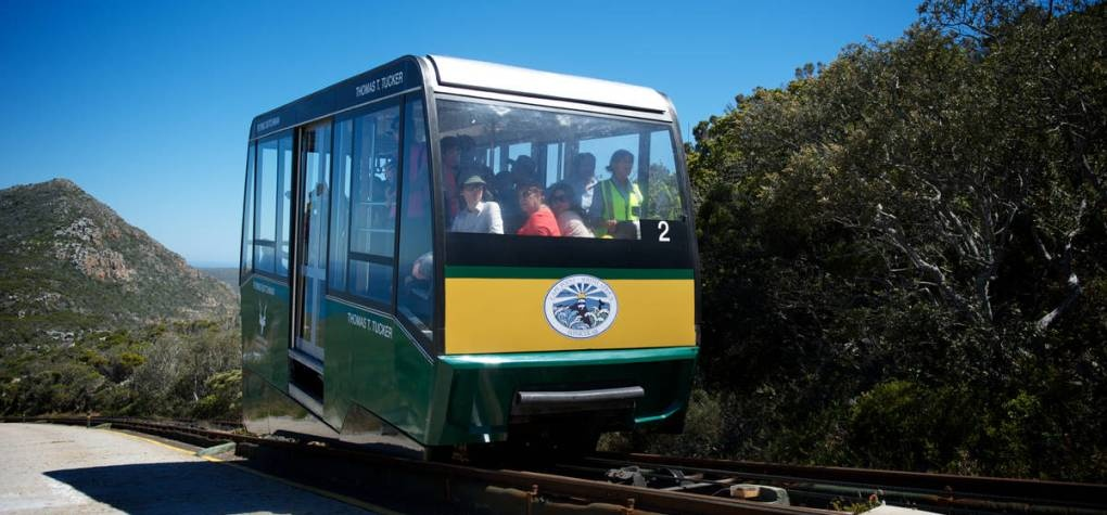 Cape Point Funicular Cable Car Return - Child-6