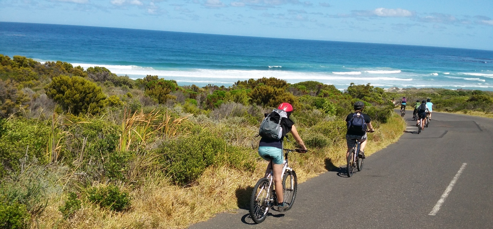 Cape Peninsula Bike Tour for 2-5