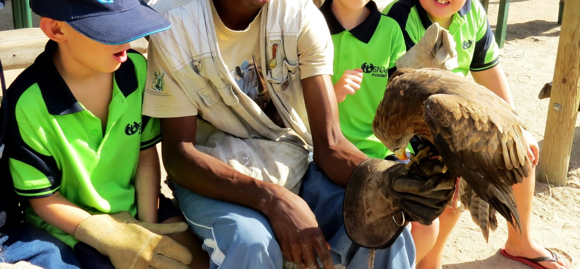 Wahlberg's Eagle Encounter in Stellenbosch, Cape Town-10