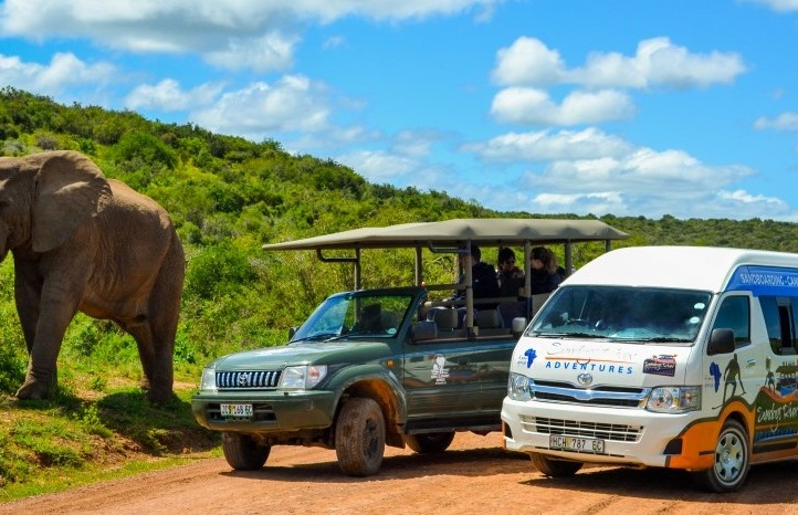 Family Friendly Full Day Elephant Safari in Port Elizabeth.jpg