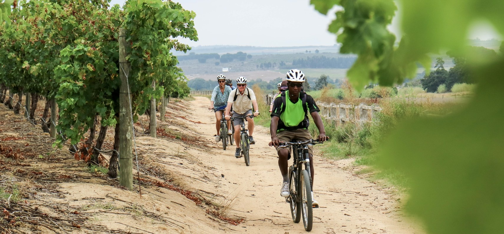 Premium Franschhoek Winelands Tour for 2-7