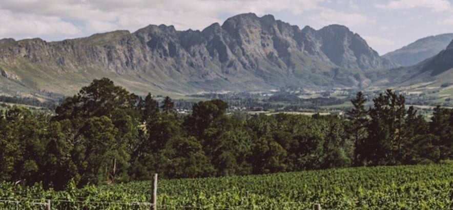 Franschhoek Hop-On Hop-Off Tram Tour For Two-9