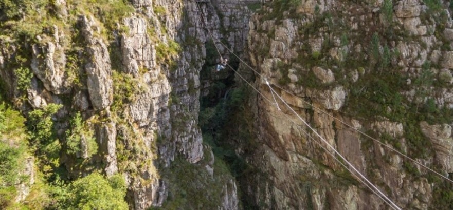 Half Day Canopy Zipline Tour in Elgin, Western Cape-6