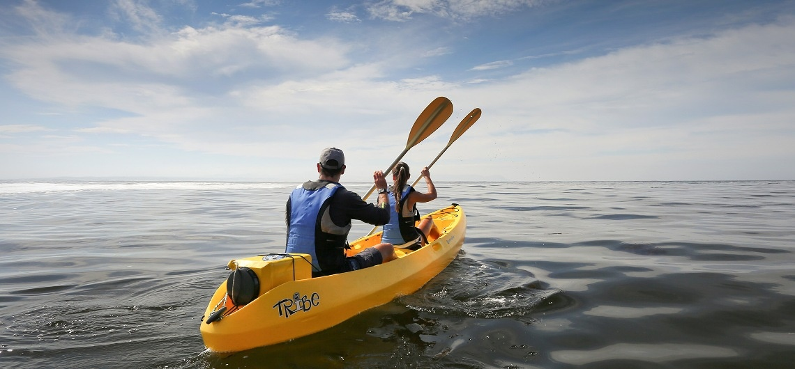 Sea Kayaking Experience in Hermanus-1