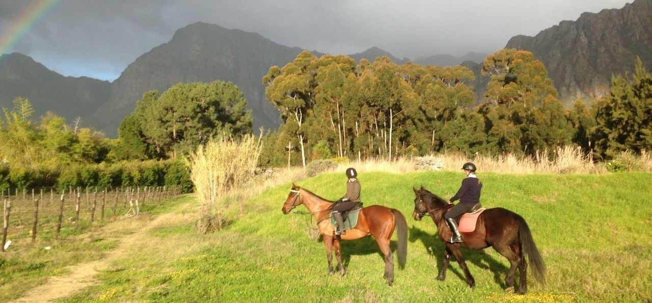 a personal experience with riding a horse One of the more popular activities at st clare's is horse riding be it the cotswolds or the new forest, what better way to experience it than on horseback.