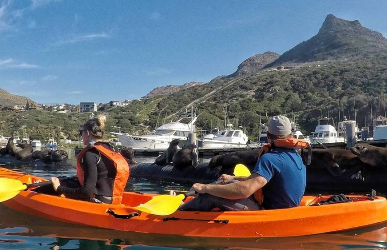 Kayak Adventures Hout Bay.jpeg