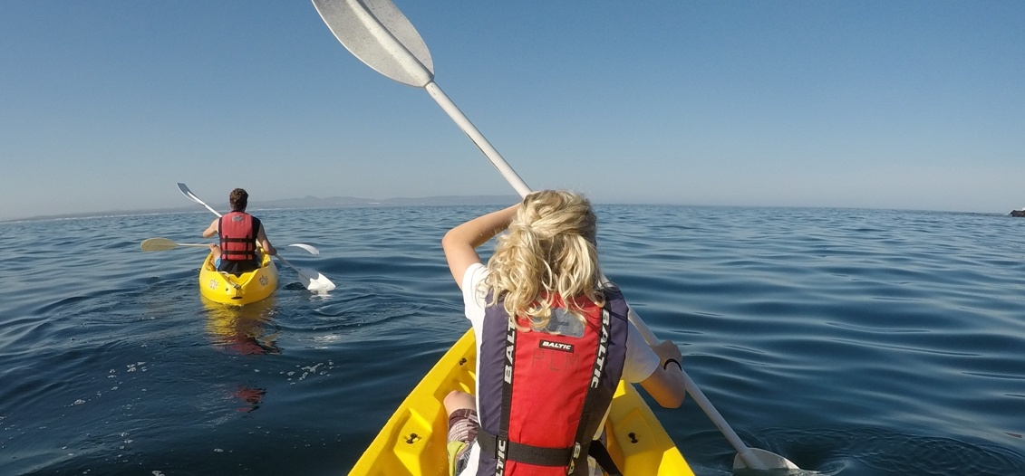 Sea Kayaking Experience in Hermanus-4