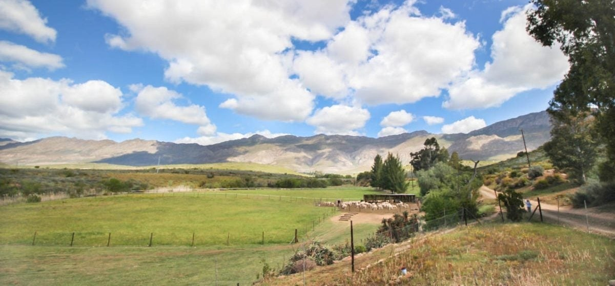 Overnight Cottage Break For Two in Montagu Western Cape-13