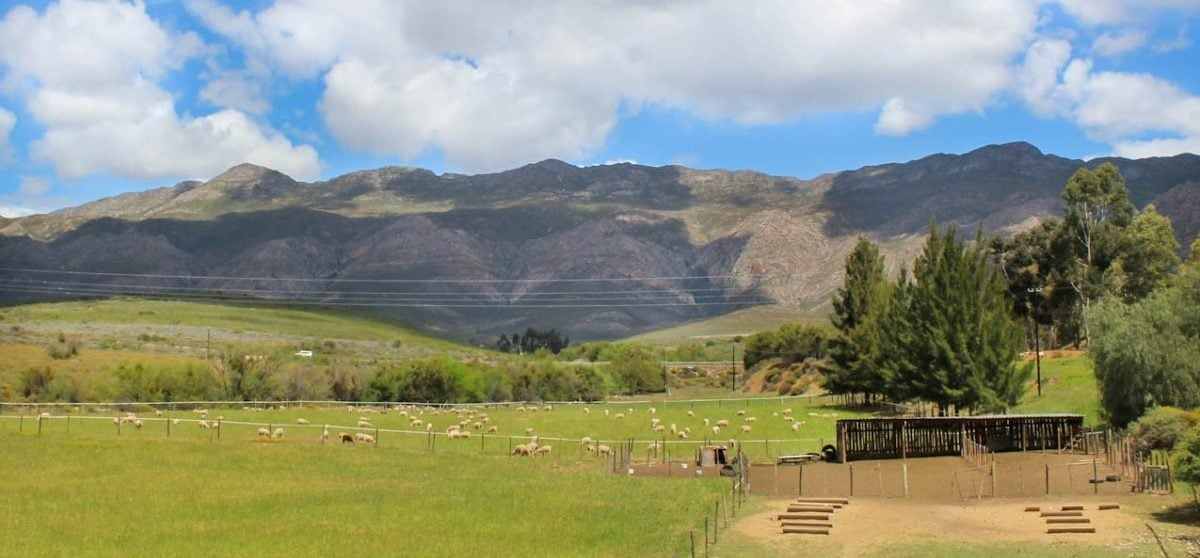 Overnight Cottage Break For Two in Montagu Western Cape-1