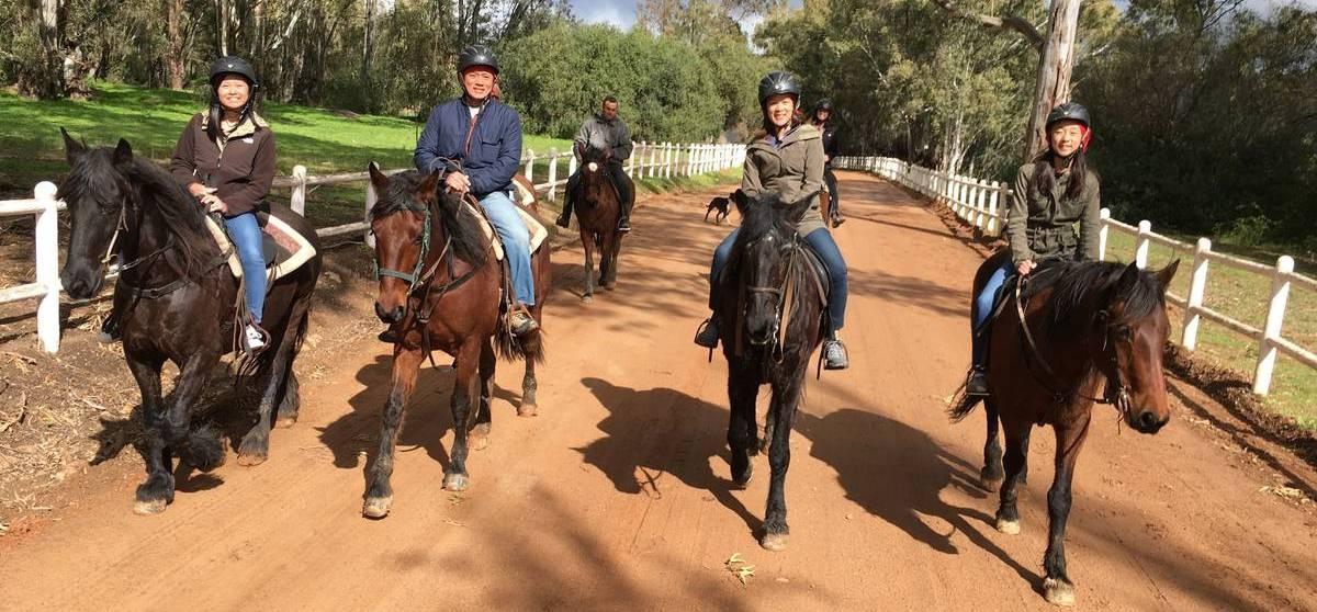 Half Day Horse Riding and Wine Tasting in Paarl-12