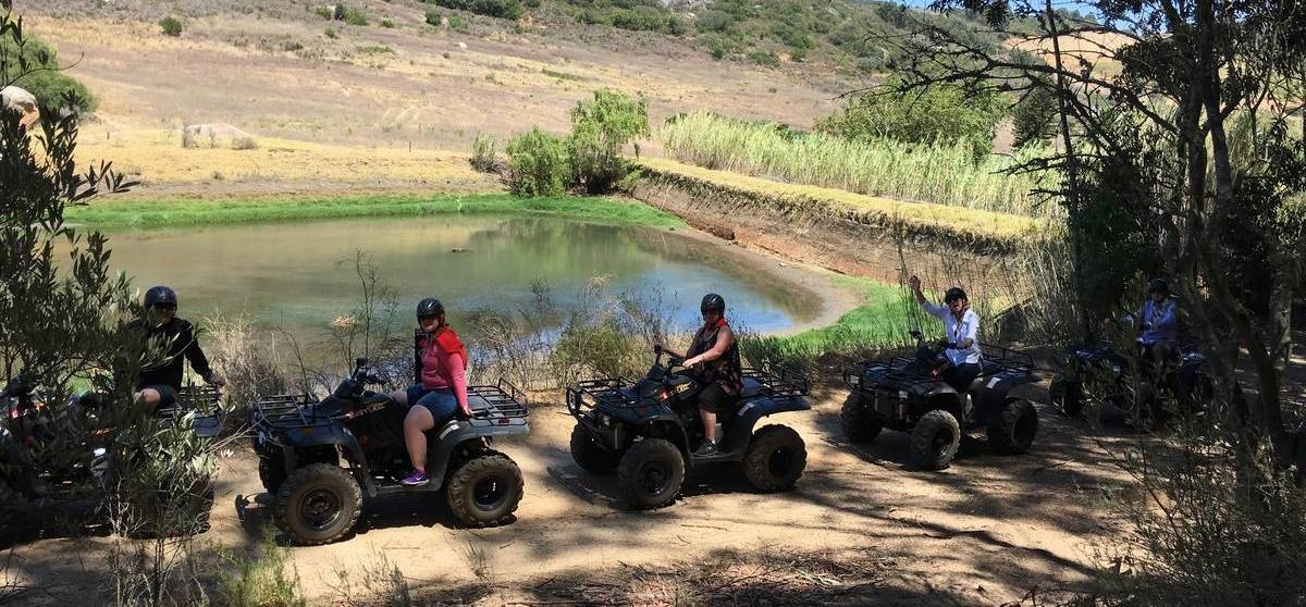 One Hour Quad Bike Nature Trail in Paarl-8