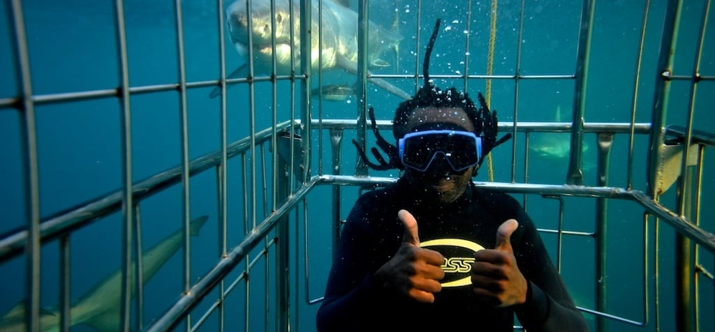 Shark Cage Diving Experience in Durban-4