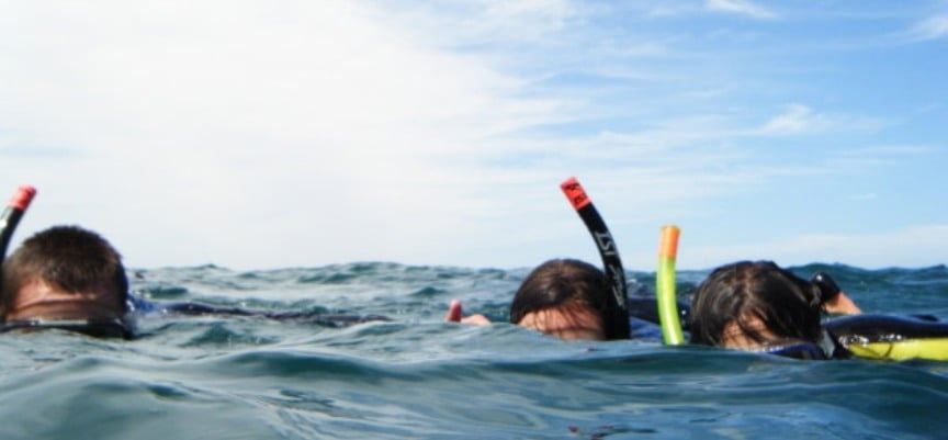 Snorkeling Experience on Storms River - Tsitsikamma-1