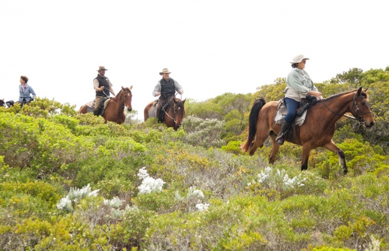 Stanford Mountain Ride 1 Hour Tour.jpg