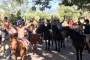 /images/Two-Hour-Horse-Riding-Experience-Trail-in-Paarl-1920x1080-resize.jpg