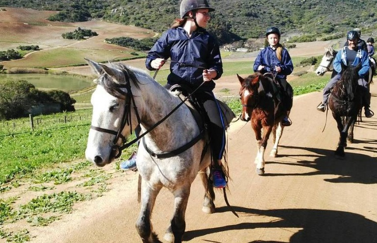 Two-Hour-Horse-Riding-Experience-in-Paarl.jpg