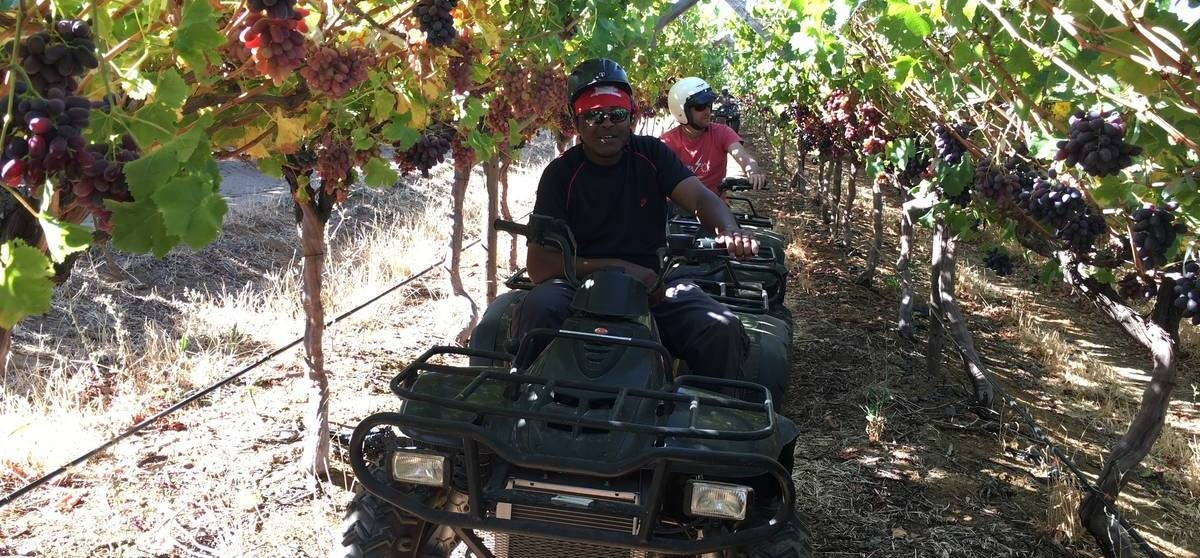 One Hour Quad Bike Nature Trail in Paarl-2