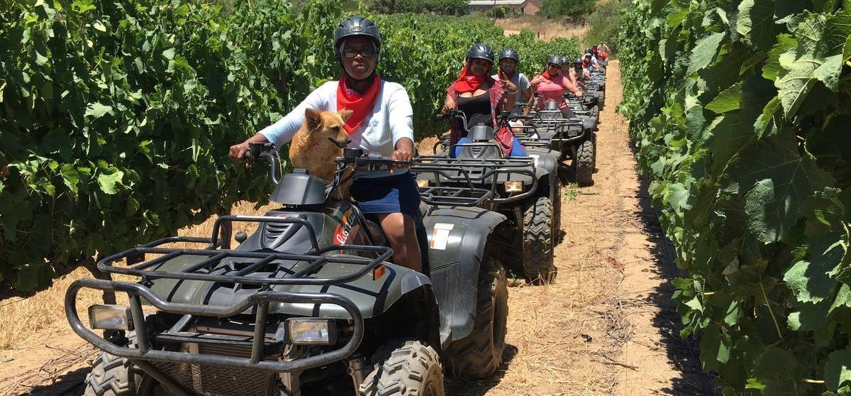 One Hour Quad Bike Nature Trail in Paarl-9
