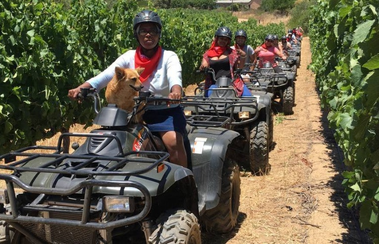 Two-Hour-Quad-Bike-Nature-Trail-in-Paarl.jpg
