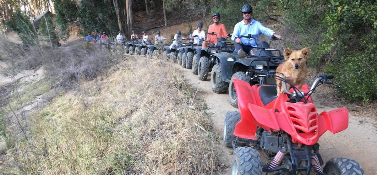 One Hour Quad Bike Nature Trail in Paarl-3