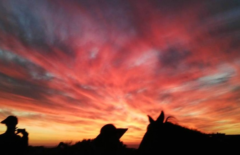 Two-Hour-Sundown-Evening-Horse-Ride-in-Paarl.jpg