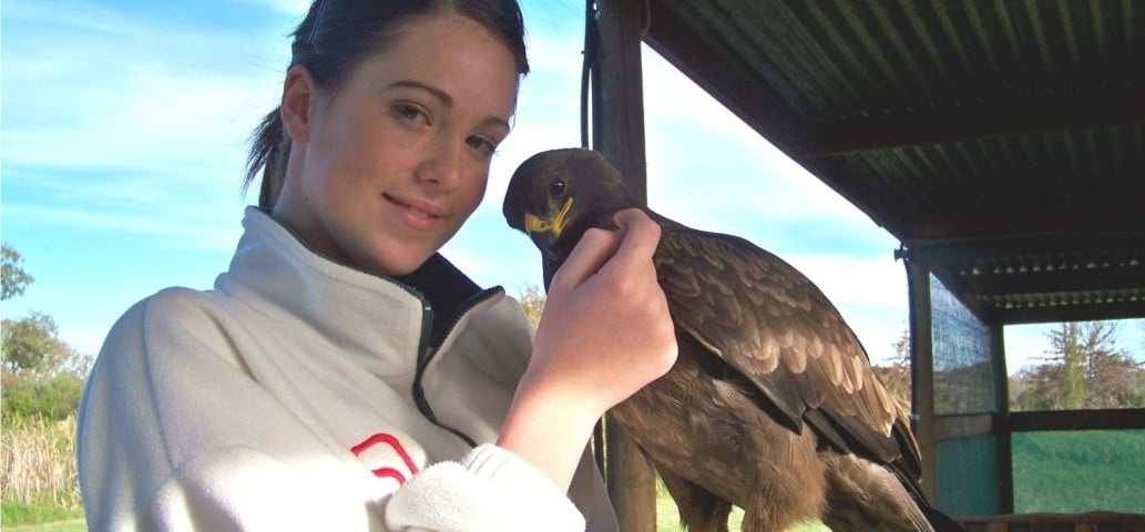 Wahlberg's Eagle Encounter in Stellenbosch, Cape Town-1