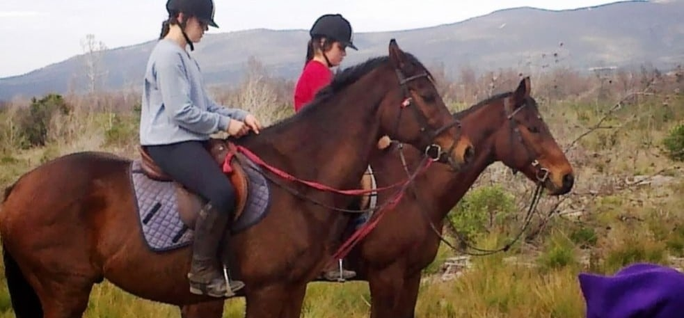 Beach Horse Riding Experience With Breakfast in Kleinmond-3