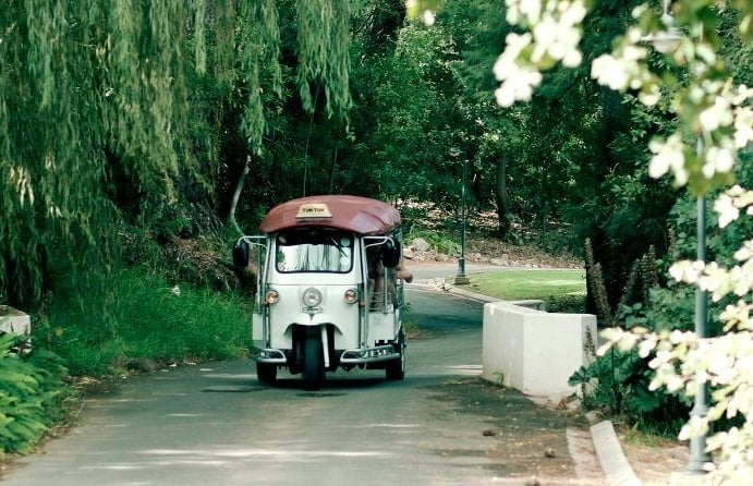 Wine-Farm-Tuk-Tuk-Tour-Cape-Town-big.jpg