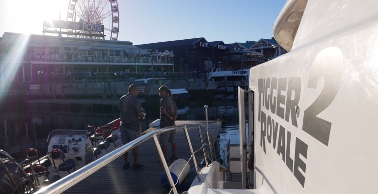 Sunset Cruise at The V&A Waterfront