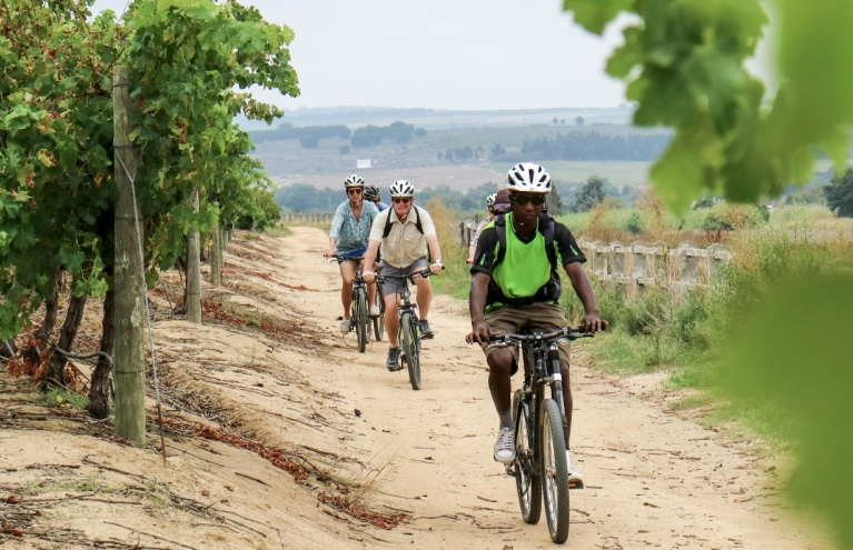 cycling through winelands.jpg
